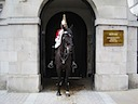 Household Cavalry at the Horse Guards